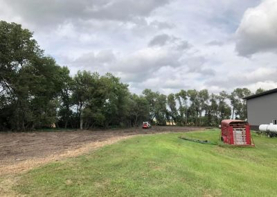 Removal of 3 tree rows in farmstead for replanting in 2020.